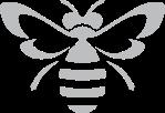 gray bee